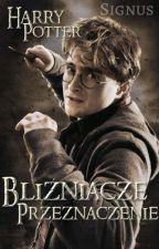 Bliźniacze Przeznaczenie - Harry Potter- ZAWIESZONE by SignusWalters