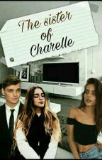 The Sister Of Charelle (Martin Garrix  y tú) by MyLittlePizza96