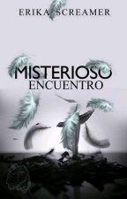 MISTERIOSO ENCUENTRO.  by erika_screamer