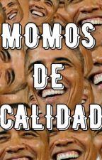 Momos de calidad 2.0  by EmeC25