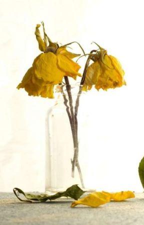 fyra döda blommor by bamsekrom