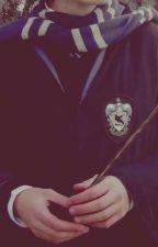 Wild Heart (Hermione GrangerxFem reader) by thatoneweirdo43