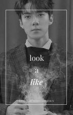 LOOK A LIKE | o.sh  by eolzzang