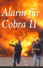 Alarm für Cobra 11- Spiel der Vergangenheit  by Maleen3010