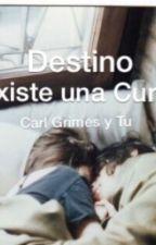 Destino, Existe Una Cura? (Carl Grimes y tu) by JudithMGrimes
