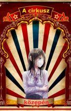A cirkusz közepén by ZoltnLagzi