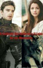 El Soldado del invierno y El lobo de las montañas by SoyTobiasForge