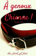 A genoux Chienne !! (Tome 1) by the_devil_of_lust
