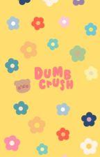 dumb crush | kageyama tobio by asstobio