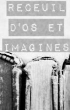 Recueil d'OS et imagines by WorstCaseScenario