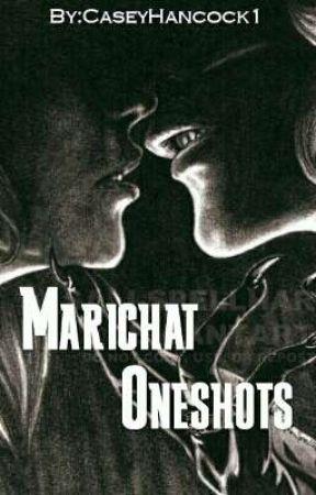 Marichat Oneshots (Miraculous ladybug fanfic) by CaseyHancock1