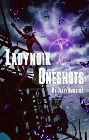 Ladynoir Oneshots (Miraculous ladybug fanfic) by CaseyHancock1
