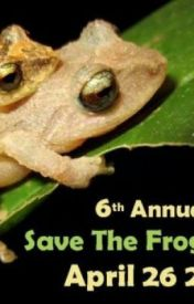 save the frogs by xxrobbielou