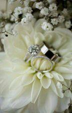 Vou comprar um marido para minha filha. by Nandagiovana