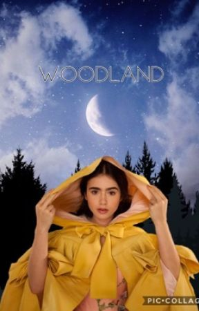 WOODLAND by Elves_Coffee
