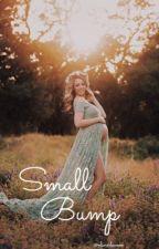 Small Bump || Shawn Mendes by olivixdawson