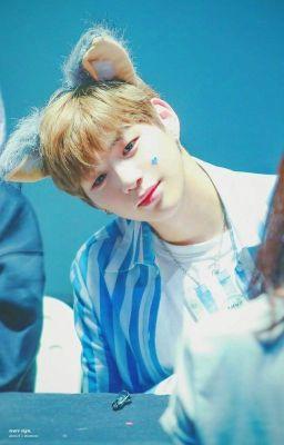 (Kang Daniel)(Fanfic) Chồng Yêu Của Tôi Là Sói?