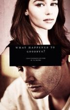 What Happened to Goodbye? by writerdean