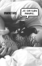 All because of Wishbone.  *Jc caylen* by IrwinStars