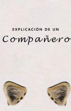 """[KrisTao] Explicación de """"un Compañero"""". by yhvg__"""