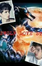 Werewolf love Story (Boyxboy) by aneesshayaniemuhamad