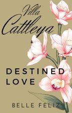Villa Cattleya 4: Destined Love (Completed) by bellefelizPHR