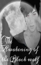 The Awakening of the Black Wolf (EXO Kai FF) by huangleaj_68