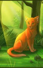 Коты-Воители. Беспокойство старейшин   Эрин Хантер by carolina_64
