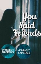 You said friends by Falconrays