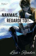 Nan mais, REGARDE TOI ! ( Levi x Reader ) by AaruZetsubo