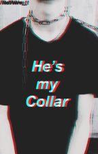 He's my collar {KamuKoma drabbles/one-shots} by RedVelve_t
