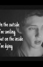 On the outside im smiling but on the inside im dying. (Troyler fanfic) by jasmynmerree17