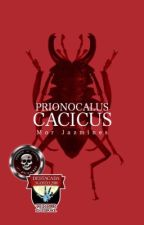 Prionocalus cacicus by LaDamaGwethelyn