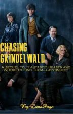 Chasing Grindelwald by LunaPage