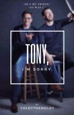 Tony... I'm sorry by VOLDYTHEMOLDY