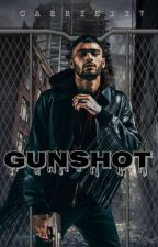 Gunshot    Zayn Malik    by Carrie127