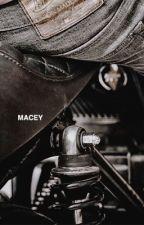 MACEY → DARYL DIXON  by shamelessshawn