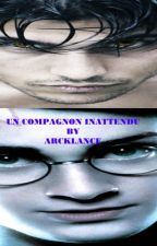 Un compagnon inattendu( crossover Harry Potter/Twilight) by Arcklance