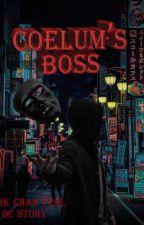 Coelum's Boss •[PCY & Oc] by _lyraxx_