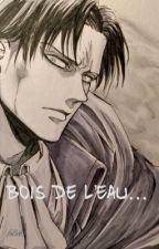 Bois de l'Eau... [Levi x Reader] by FaBob5