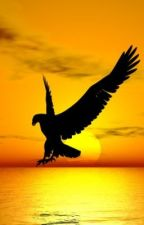 Shadow Eagle by choikie