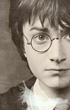 Harry Potter i walka z przeznaczeniem  by Zakoffana00