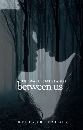 The Wall That Stands Between Us #Wattys2018