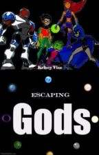 Teen Titans/Robin X Reader Escaping Gods by vize4234