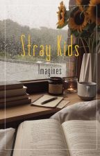 Stray Kids Imagines by Spearb08
