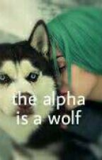 The alpha is a wolf by rore5x
