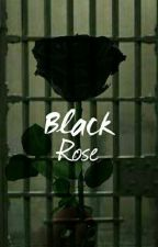 Black Rose by ShivaIva