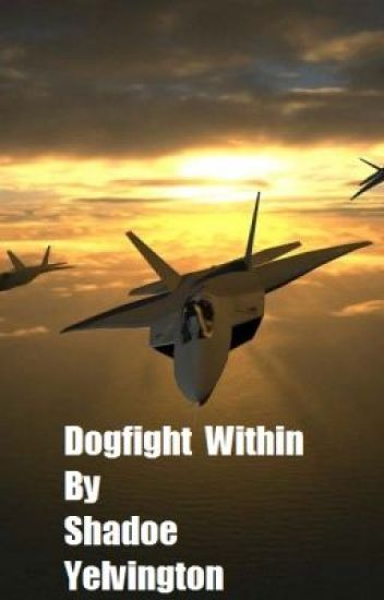 Dogfight Within