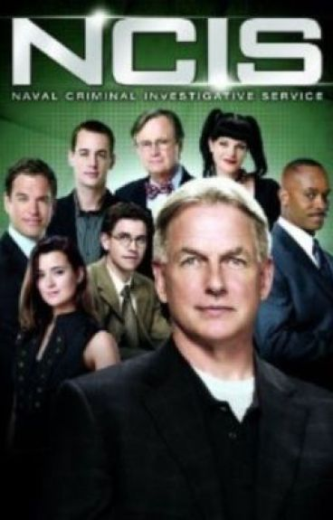 The New Agent (NCIS fanfic)