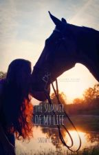 The Summer Of My Life by Snowyliking